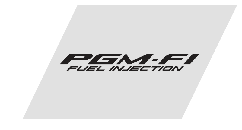 PROGRAMMED FUEL INJECTION